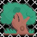 Tree Nature Landscape Icon