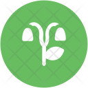 Tree Curved Nature Icon