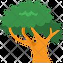Tree Plant Green Icon