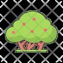 Tree Bush Garden Icon