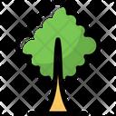 Tree Nature Beautiful Icon