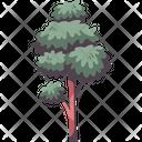 Tree Park Wood Icon