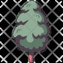 Tree Pine Wood Icon