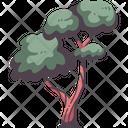 Tree Spring Wild Icon
