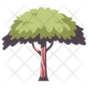 Tree Wood Branch Icon