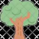 Tree Park Eco Icon