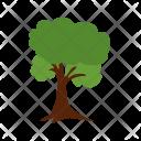 Tree Halloween Plant Icon