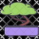 Tree Bonsai Japan Icon