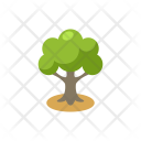 Tree Forest Greenery Icon