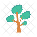 Tree Park Forest Icon