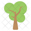 Nature Tree Ecology Icon