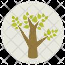 Tree Leaf Plant Icon