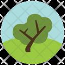 Tree Greenery Icon