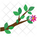 Tree Branch Leaves Icon