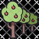 Tree Farm Apple Trees Apple Icon