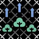 Tree Growth Tree Increase Icon
