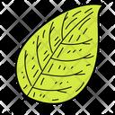 Tree Leaf Leaf Foliage Icon