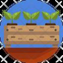 Garden Tree Nursery Plants Icon