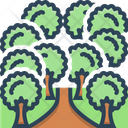 Forest Jungle Trees Icon