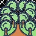 Trees Icon