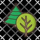 Trees Deciduous Coniferous Icon
