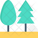 Trees Two Fir Icon