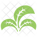 Tripartite Leaf Icon
