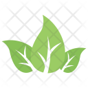 Tripartite Divided Twig Icon