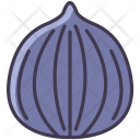 Tropical Fruit Fig Icon