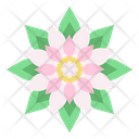Tropical Dahlia Jasmine Icon