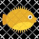 Tropical Mammal Sea Icon