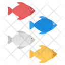 Tropical Fishes Icon