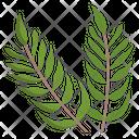 Tropical Palm Icon
