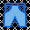 Trunks Shorts Beach Icon