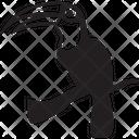Tucano Icon