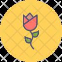 Tulip Flower Spring Icon
