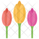 Tulips Flower Nature Icon
