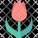 Tulip Rose Flower Icon