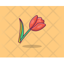 Tulip Spring Flower Agriculture Icon