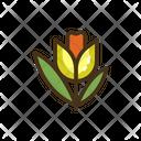 Tulip Flower Plant Icon
