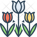 Tulip Spring Blooming Bunch Icon