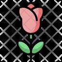 Tulip Plant Nature Icon