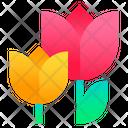 Tulip Flower Bloom Icon