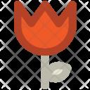 Tulip Flower Blossom Icon