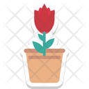 Tulip Bud Tulip Flower Icon