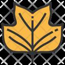 Tulipifera Leaf Greenery Icon