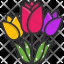 Tulips Icon