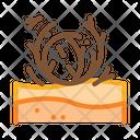 Tumbleweed Desert Sandy Icon