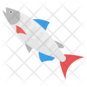Fish Tuna Seafood Icon