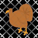 Turkey Food Animals Icon
